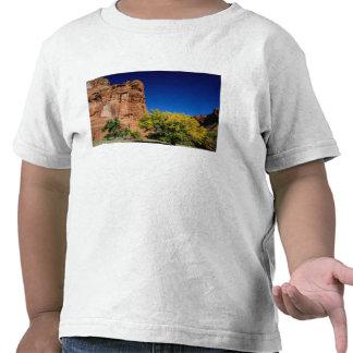 North America, USA, Arizona, Navajo Indian 3 T-shirts
