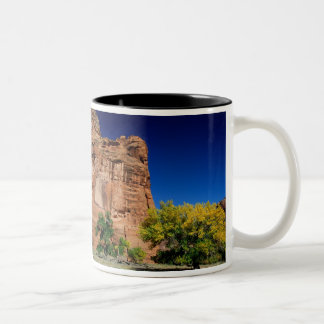 North America, USA, Arizona, Navajo Indian 3 Two-Tone Coffee Mug