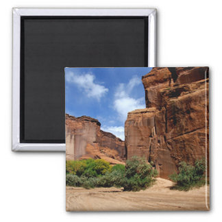 North America, USA, Arizona, Navajo Indian 5 Magnet
