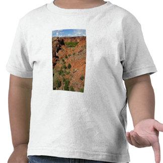 North America, USA, Arizona, Navajo Indian Tshirt