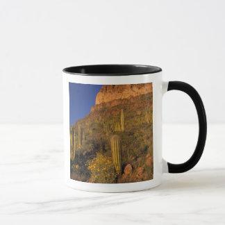 North America, USA, Arizona, Organ Pipe Cactus 2 Mug