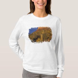 North America, USA, Arizona, Organ Pipe Cactus 2 T-Shirt