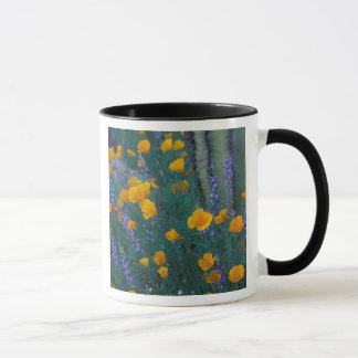 North America, USA, Arizona, Organ Pipe Cactus Mug