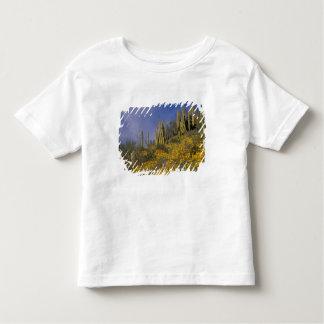 North America, USA, Arizona, Organ Pipe Cactus Tee Shirt