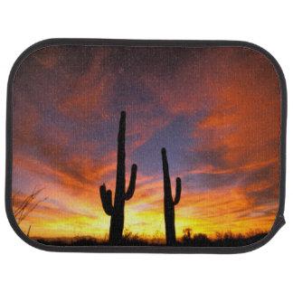 North America, USA, Arizona, Sonoran Desert. Car Mat