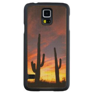 North America, USA, Arizona, Sonoran Desert. Carved® Maple Galaxy S5 Case
