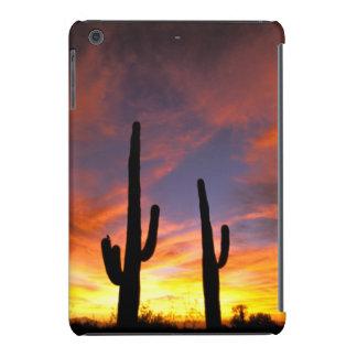 North America, USA, Arizona, Sonoran Desert. iPad Mini Cases
