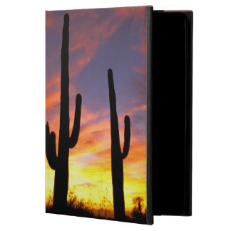 North America, USA, Arizona, Sonoran Desert. iPad Air Cases