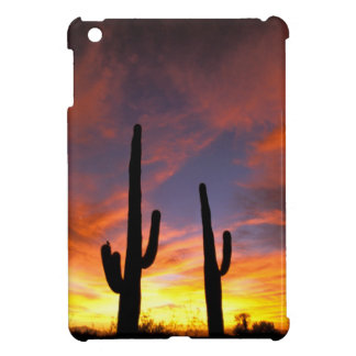 North America, USA, Arizona, Sonoran Desert. iPad Mini Case