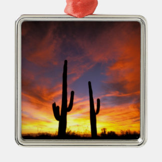 North America, USA, Arizona, Sonoran Desert. Metal Ornament