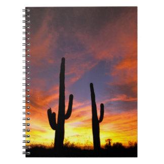 North America, USA, Arizona, Sonoran Desert. Notebook