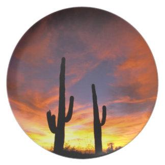 North America, USA, Arizona, Sonoran Desert. Plate