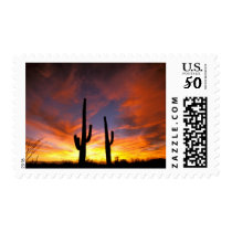 North America, USA, Arizona, Sonoran Desert. Postage