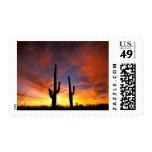 North America, USA, Arizona, Sonoran Desert. Postage Stamps