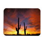 North America, USA, Arizona, Sonoran Desert. Rectangular Magnet