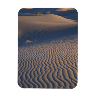 North America, USA, Califorinia, Death Valley Magnet