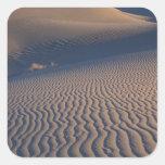 North America, USA, Califorinia, Death Valley Square Sticker