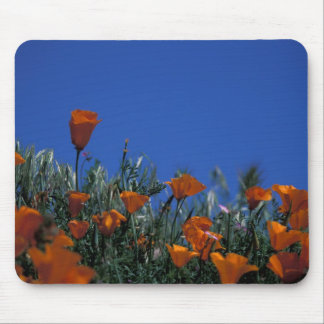 North America, USA, California, Antelope Valley, 3 Mouse Pad