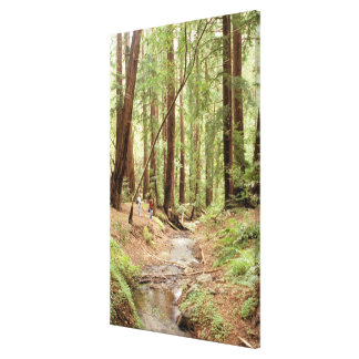 North America, USA, California, Big Sur, 3 Canvas Print