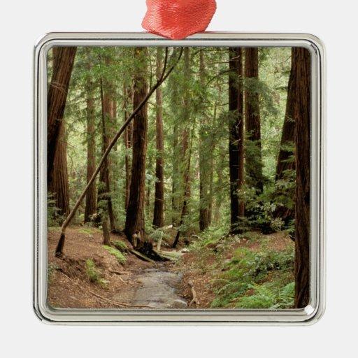 North America, USA, California, Big Sur, 3 Metal Ornament