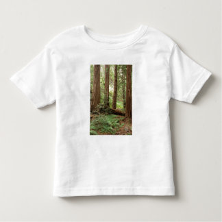North America, USA, California, Big Sur, Toddler T-shirt