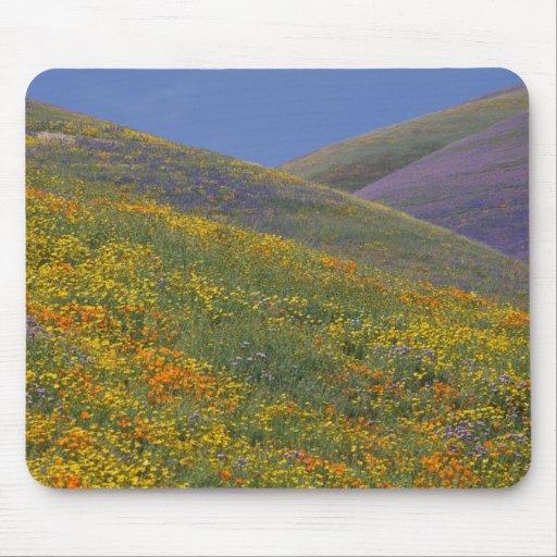 North America, USA, California, Los Angeles Mouse Pad