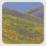 North America, USA, California, Los Angeles Sticker