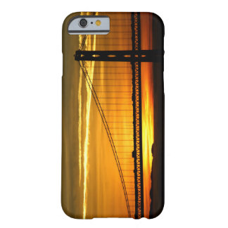North America, USA, California, San Francisco. 3 Barely There iPhone 6 Case
