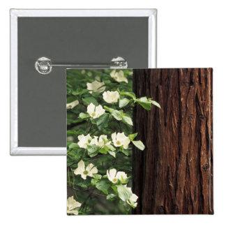 North America, USA, California, Yosemite 3 Pinback Button
