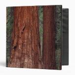 North America, USA, California, Yosemite NP, 2 3 Ring Binders