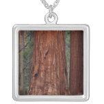 North America, USA, California, Yosemite NP, 2 Necklaces