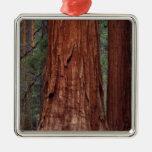North America, USA, California, Yosemite NP, 2 Christmas Tree Ornament