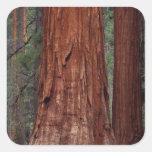 North America, USA, California, Yosemite NP, 2 Square Sticker