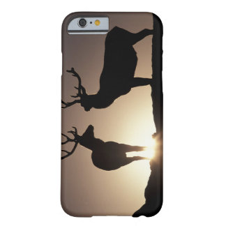 North America, USA, Colorado. Rocky Mountains Barely There iPhone 6 Case