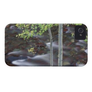 North America, USA, Colorado, San Juan iPhone 4 Case-Mate Cases