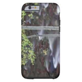 North America, USA, Colorado, San Juan Tough iPhone 6 Case