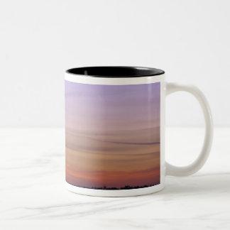 North America, USA, Florida, Mt. Dora, a trio Two-Tone Coffee Mug