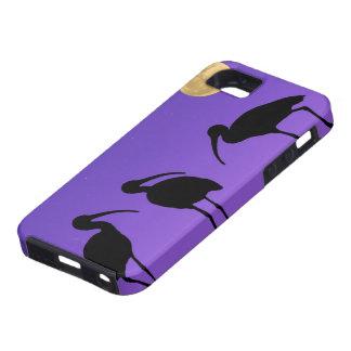 North America, USA, Florida, Mt. Dora, iPhone SE/5/5s Case