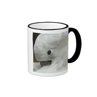North America, USA, Florida, St. Augustine, a Ringer Mug