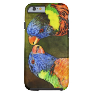 North America, USA, Florida, Tampa, digitally Tough iPhone 6 Case