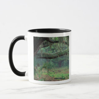 North America, USA, Georgia, Cumberland Mug