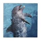 North America, USA, Hawaii. Dolphin 2 Ceramic Tile