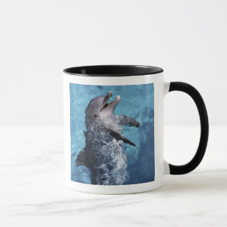 North America, USA, Hawaii. Dolphin 2 Mug