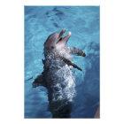 North America, USA, Hawaii. Dolphin 2 Photo Print