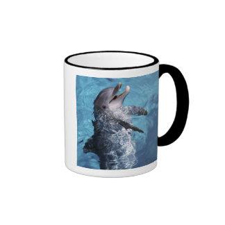 North America, USA, Hawaii. Dolphin 2 Ringer Mug
