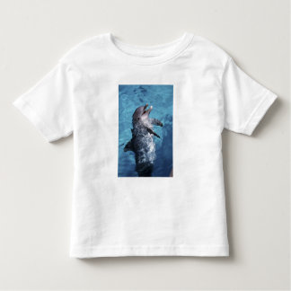 North America, USA, Hawaii. Dolphin 2 Toddler T-shirt