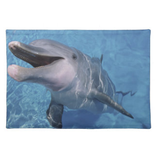 North America, USA, Hawaii. Dolphin 3 Cloth Placemat