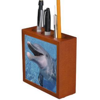 North America, USA, Hawaii. Dolphin 3 Pencil/Pen Holder