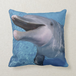 North America, USA, Hawaii. Dolphin 3 Throw Pillow