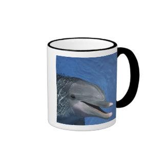 North America, USA, Hawaii. Dolphin Coffee Mugs